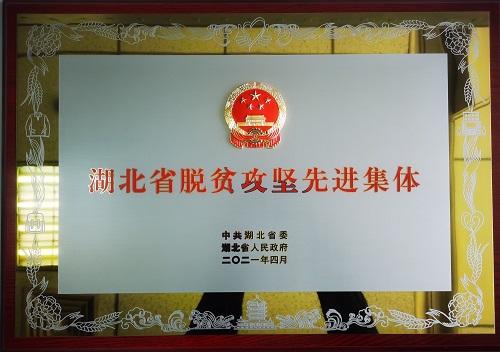 """东风公司扶贫办荣获""""湖北省脱贫攻坚先进集体""""称号"""